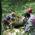焼岳登山道整備